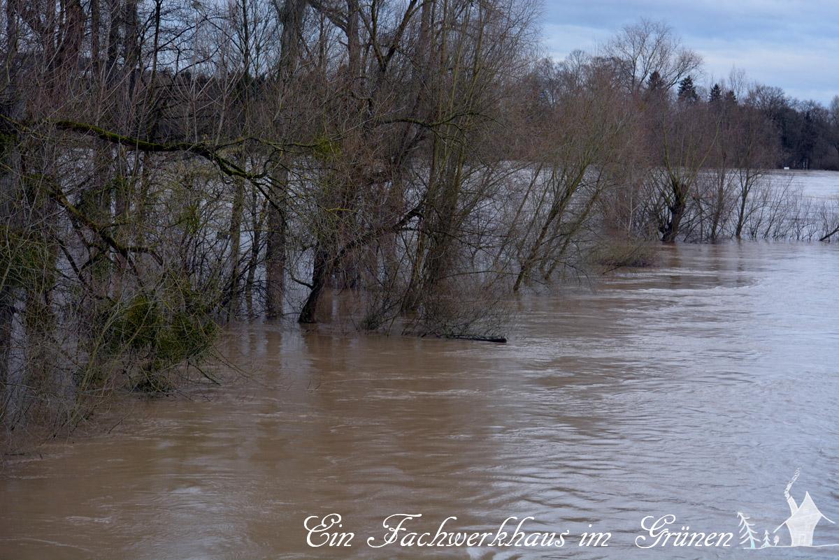 Grafenwerth, Bad Honnef, Hochwasser