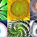 Αυτός ο Θεϊκός λόγος βρίσκεται παντού στη φύση και μπορεί να είναι το σχέδιο του σύμπαντος