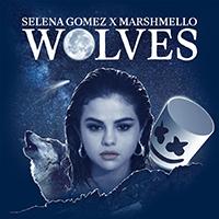 Baixar Wolves - Selena Gomez & Marshmello MP3