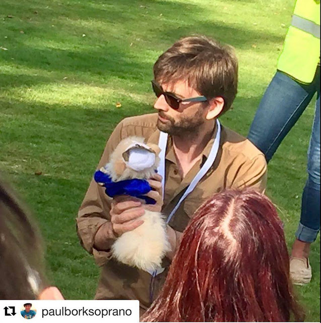 Chiswick House Dog Show Facebook