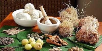 3 Obat Herbal Kolesterol dan Asam Urat Paling Alami