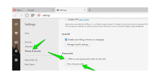 Opera Privacy & security section settings