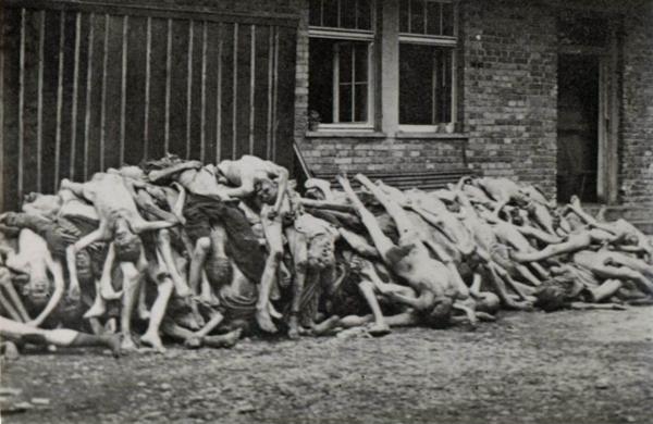 Vítimas do Holocausto, Auschwitz, Campos de Concentração