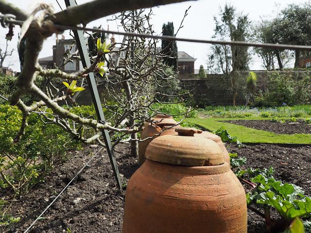 London--garden