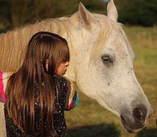 how to start your very first business, horse ownership, horses as pets