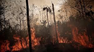 البرازيل ترفض مساعدة مجموعة السبع في إخماد الحرائق