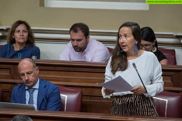 """Labrador: """"El Gobierno de Canarias debería revisar su incapacidad con las actuaciones programadas en La Palma"""""""