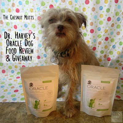 The Chesnut Mutts Dr. Harvey's Oracle Dog Food Review and Giveaway