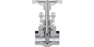 cutaway view forged steel gate valve