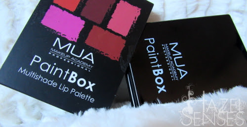 Multishade Lip Palette PaintBox. MUA