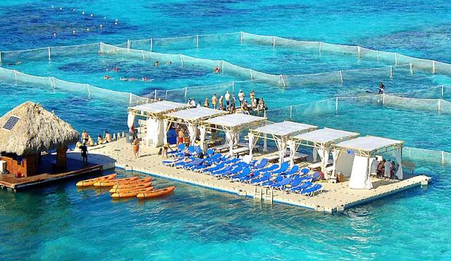 Mais detalhes sobre o Marinarium em Punta Cana