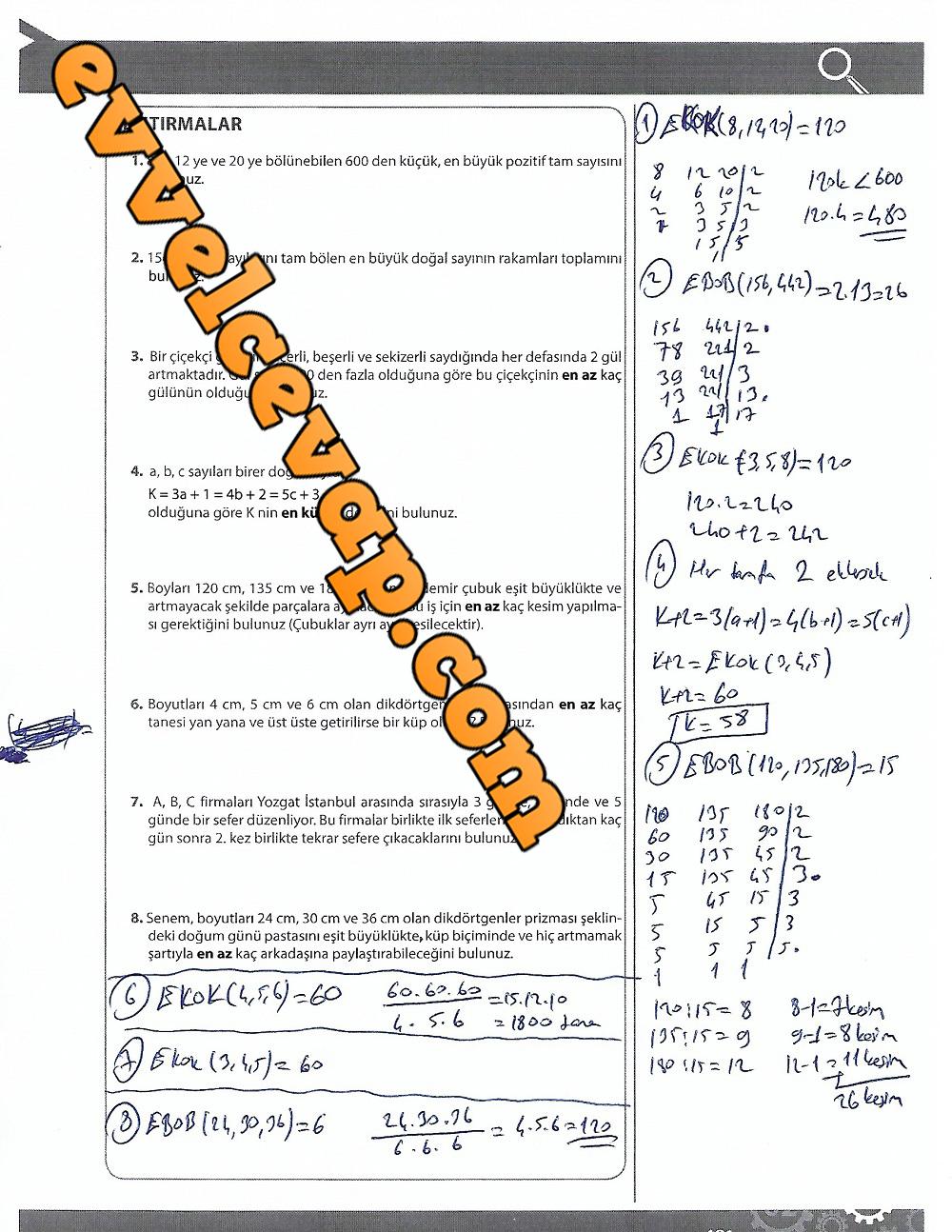 9.Sınıf Matematik MEB Yayınları Ders Kitabı 191.Sayfa Cevapları 4.Ünite
