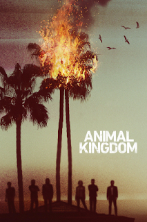 Animal Kingdom (1