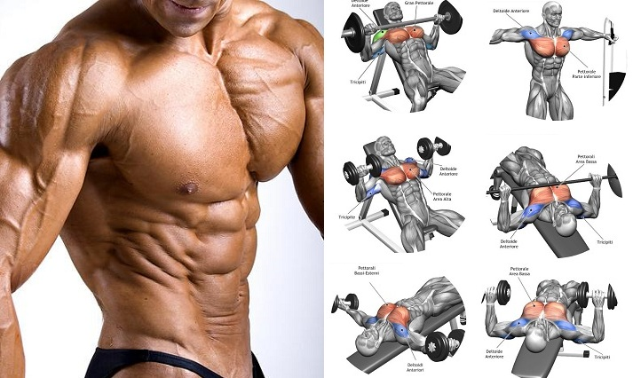 Do You Want To Have A Huge Chest Muscles But Dont Know The Appropriate Upper Workout Perform Having Massive Can Only Be Achieved By