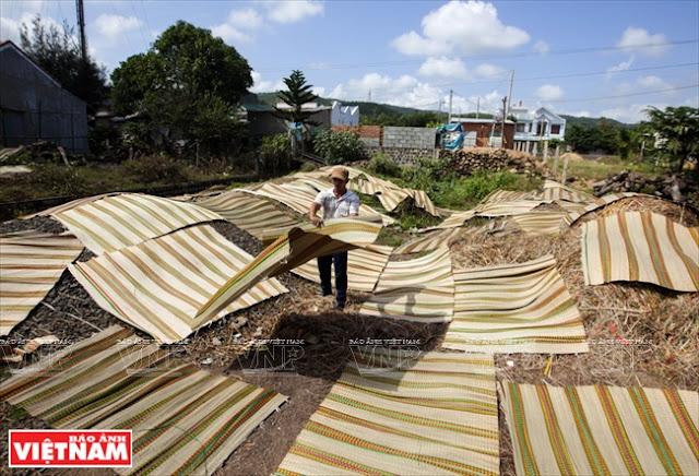Để làm ra một chiếc chiếu cói Phú Tân thành phẩm phải trải qua rất nhiều công đoạn.
