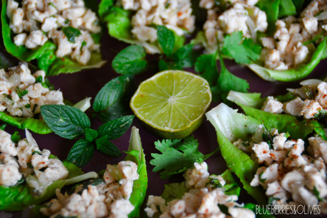 Thai Larb Gai salad 4