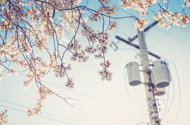 Wiosenna lista rzeczy do zrobienia. Mój plan na spędzenie wiosny.