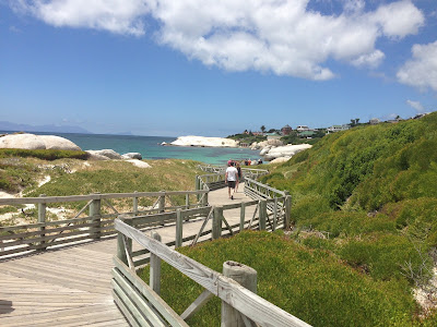 simons town, half day tour, cobra tour, beach view, way to the beach, boulders beach
