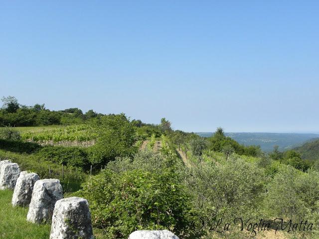 Panorama Istria