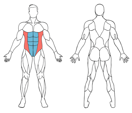 Cómo hacer abdominales crunch paso a paso - Reto de 30 días Fitness