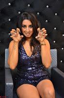 Sanjjana at her best expressions as aggresive cat   beautiful Actress Sanjjana Exclusive Pics 055.JPG