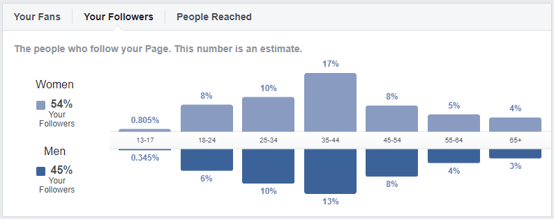 example of Facebook Audience Insights