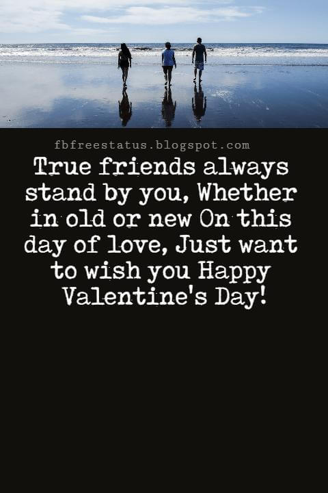 Valentines Day Messages For Friends, True friends always stand by you, Whether in old or new On this day of love, Just want to wish you Happy Valentine's Day!