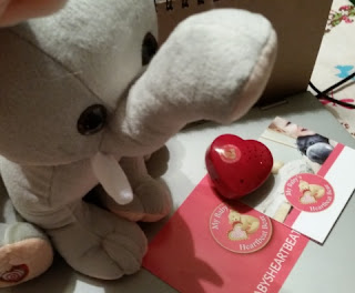 My Baby's Heartbeat Bear kit contents