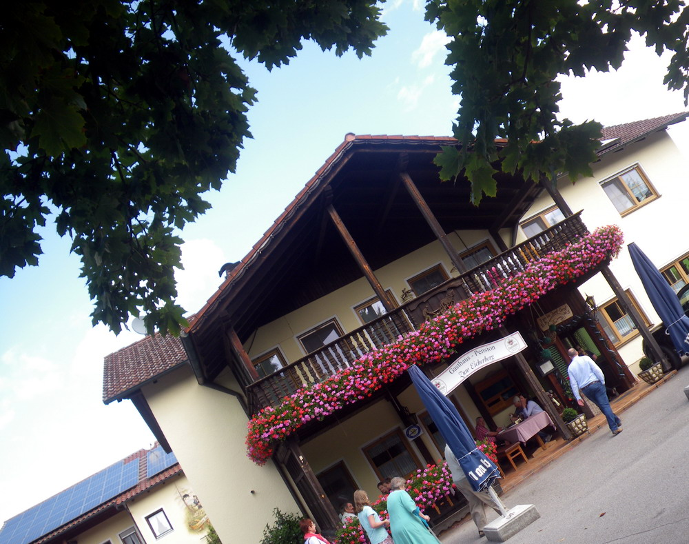 auswärts essen regensburg: Beim Graf in Eich
