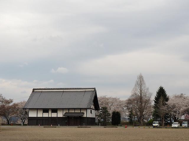 龍岡城五稜郭 お台所 桜