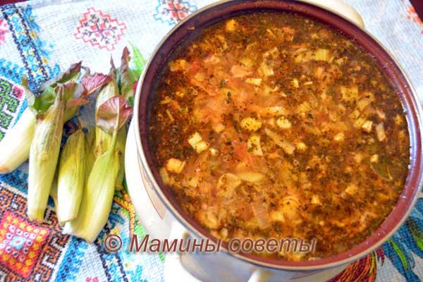Суп из горца сахалинского или рейнутрии
