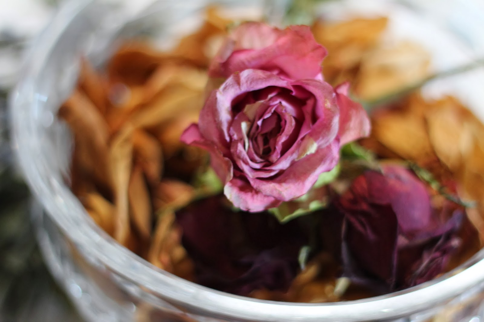 Rose Petals In A Beautiful Glass Bowl, Living From Glory To Glory Blog...