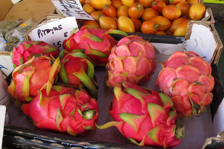 Vasca Da Bagno Wikipedia : Discettazioni erranti: frutta e verdura tropicali