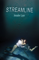 https://www.goodreads.com/book/show/13421438-streamline
