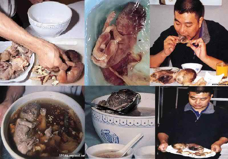 Chinese people have started eating human babies