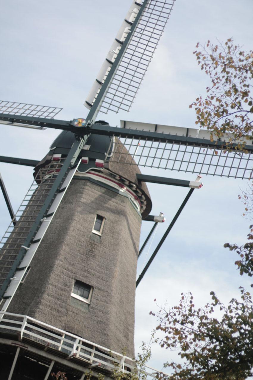 où manger amsterdam