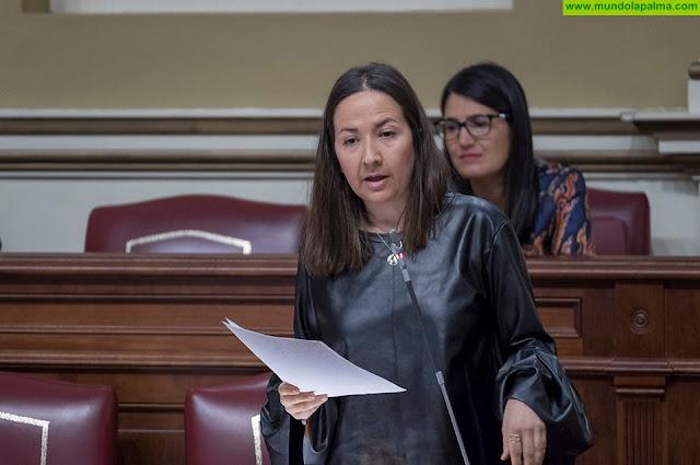 Hernández Labrador señala que el Gobierno de Canarias sigue incumpliendo con los estudiantes de la Escuela de Enfermería de La Palma