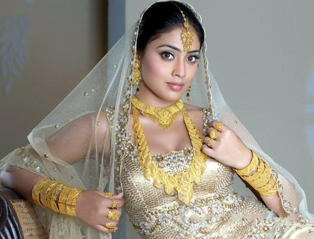 Shriya Wonderful Golden Sari Images Collection Gallery