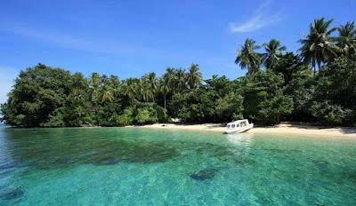 Taman Nasional Teluk Cendrawasih-Kekayaan Eksotis di Daerah Tropis