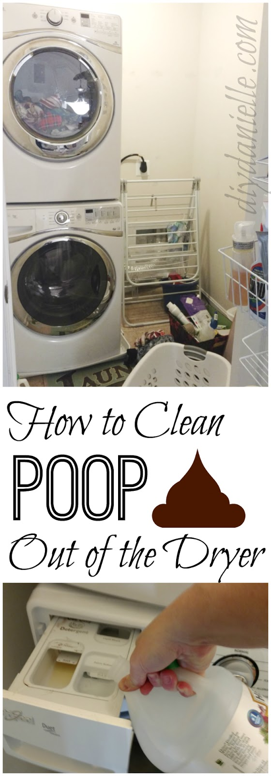 How to clean poop out of the dryer and washing machine.