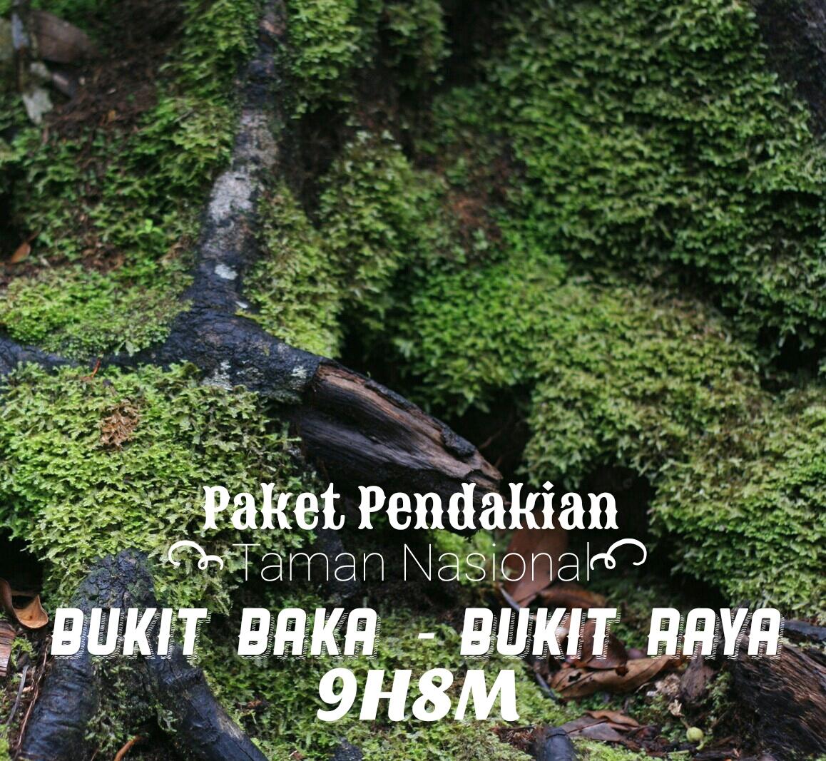 Explore Batu Dan Bromo 2h1m Be Borneo Tour Private Trip Malang Paket Pendakian Taman Nasional Buki