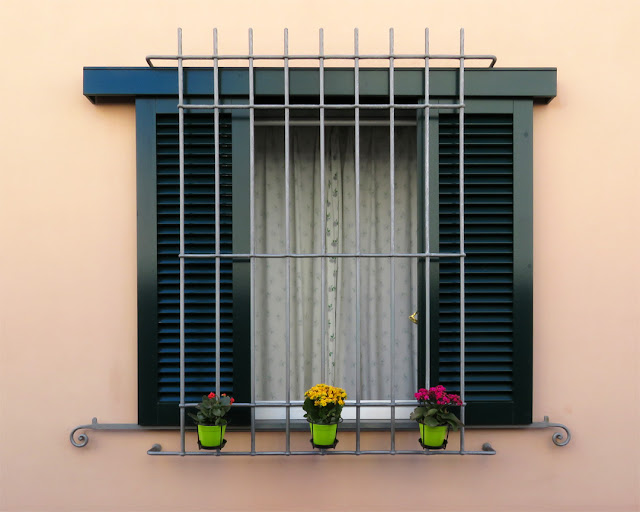 Three flower pots and a window, Via degli Archi, Livorno