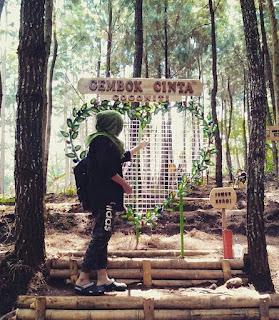 Rute Dan Lokasi Hutan Pinus Gogoniti Blitar