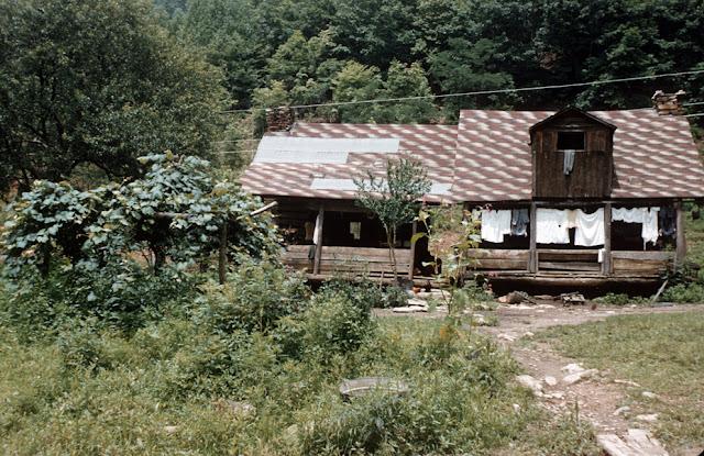 طبيعة لمنازل الغابات A_F_331.jpg
