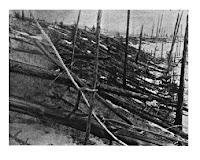 astronomycast revisits 1908 tunguska blast