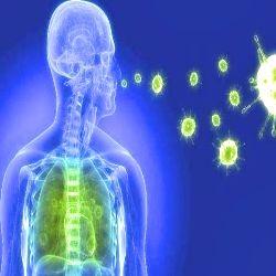 Seis perguntas freqüentes sobre constipações e gripe