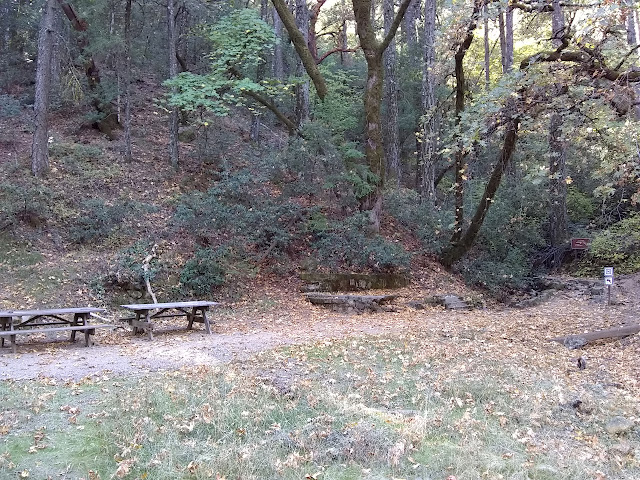 old picnic area with tables and random steps