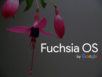 Google Still Mute Fuchsia OS Problem