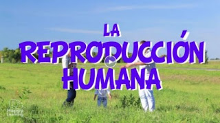 http://happylearning.tv/la-reproduccion-humana/
