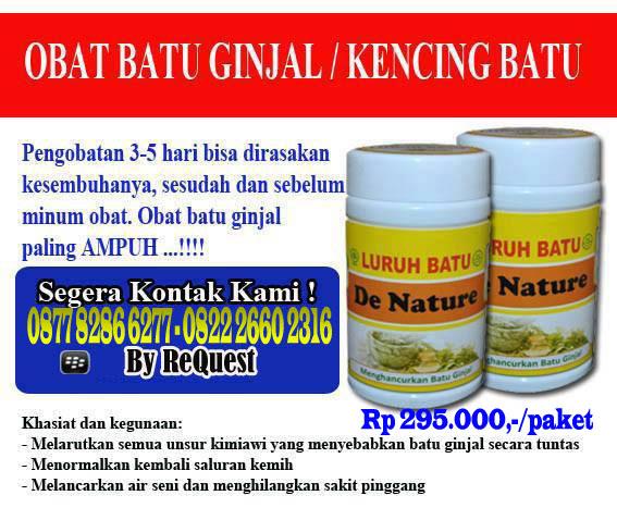 Obat Herbal Kencing Batu: Obat Kencing Batu / Batu Ginjal